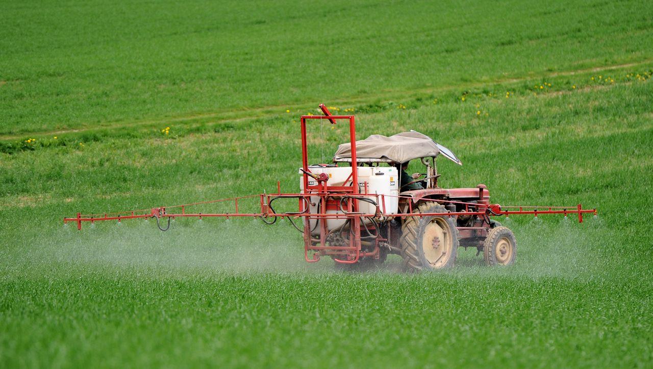 Giftige Agrochemikalie: Brasilien lässt umstrittenen Bayer-Unkrautvernichter Dicamba zu