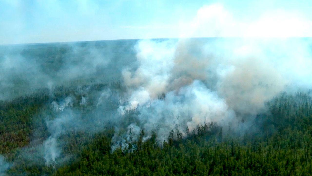 Acht Millionen Hektar abgebrannt: Brände in Sibirien verursachen CO2-Rekord