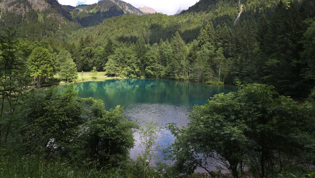 Oberallgäu: Almhirten retten Touristin nach 60-Meter-Sturz