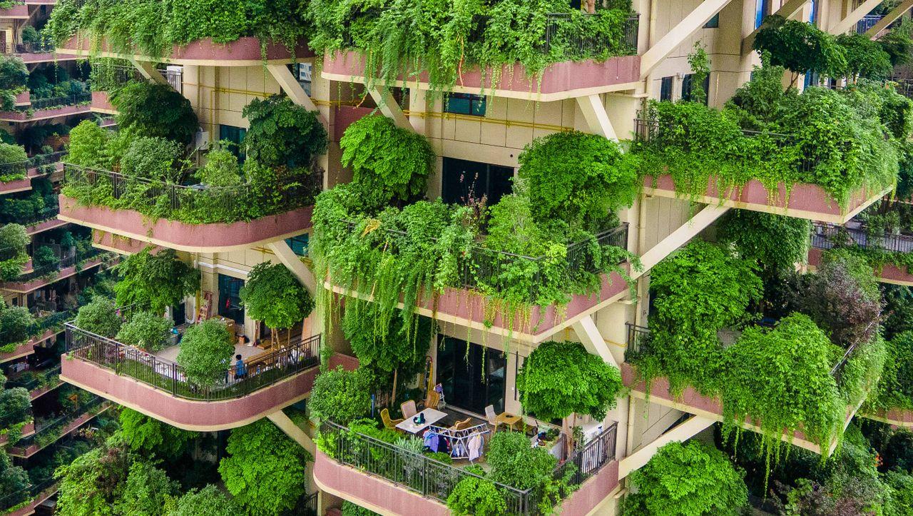 Bilder der Woche: Der Albtraum vom Haus im Grünen