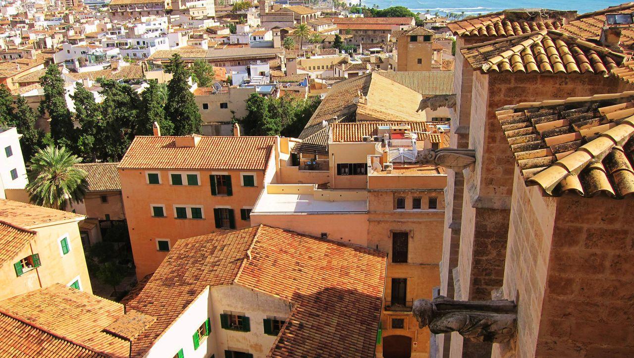 Auf dem Dach von Palmas Kathedrale: Herrlich entrückt
